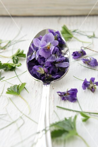 A spoonful of violets