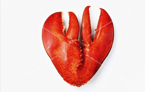 A heart made from lobster claws