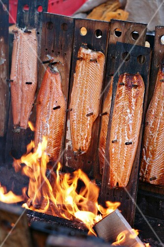Salmon being smoked over an open fire, Finland