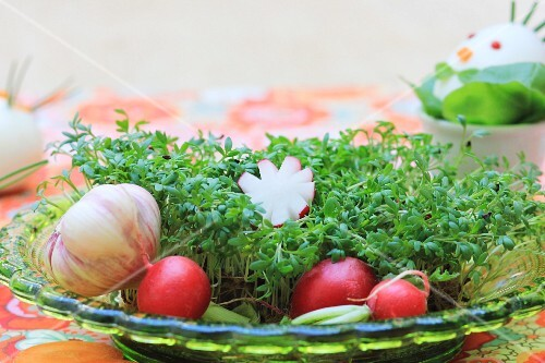 An Easter nest made from cress with carrots, radishes and garlic for an Easter breakfast