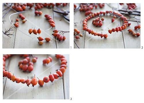 Crafting a wreath of rosehips