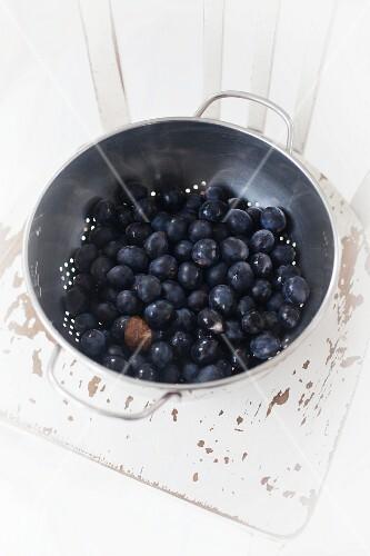 Fresh blueberries in a colander