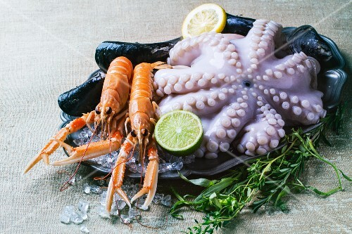 Octopus and scampi on ice with herbs and lemons