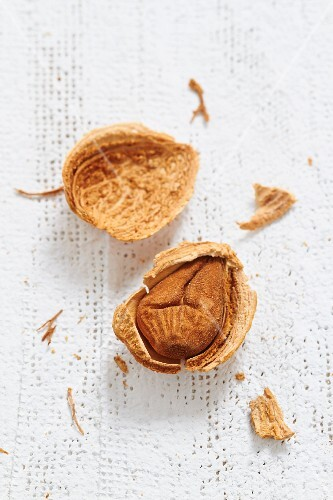 A cracked almond (close-up)