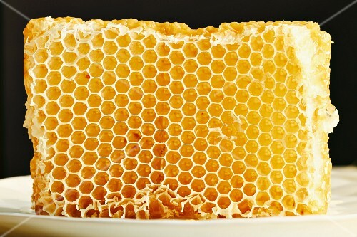 Honeycomb on a white plate