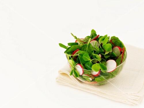 Radish salad with pea shoots