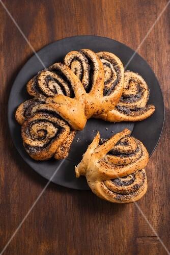 Mákos csiga (Hungarian poppyseed pastries)