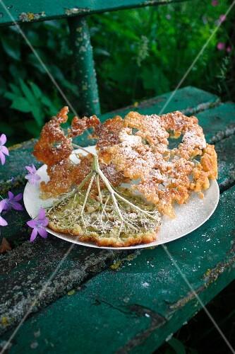 Fried elderflowers on a garden bench