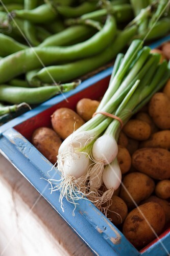 Fresh vegetables (potatoes, spring onions) in wooden crate