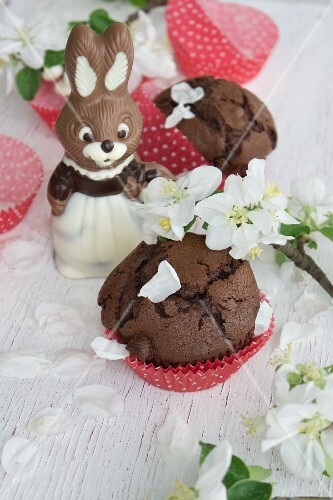 Chocolate muffins with a chocolate Easter bunny and apple blossom