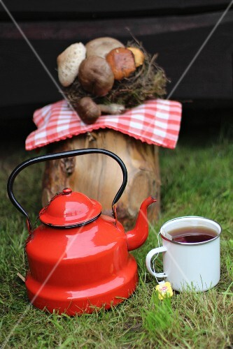 Tea in an enamel pot and cup in front of a tree trunk with mushrooms