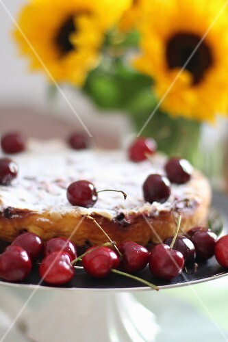 A summery cherry cake with sunflowers in the background
