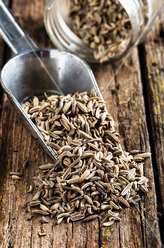Fennel seeds on a metal scoop