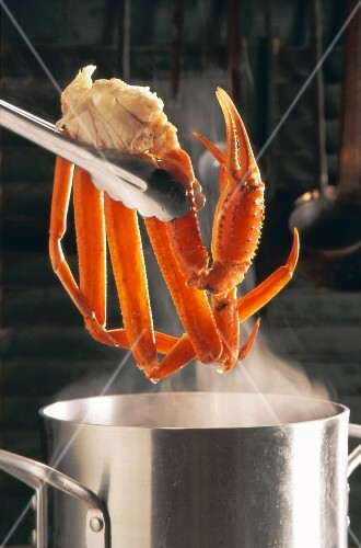 Tongs holding crab legs over a steaming stock pot