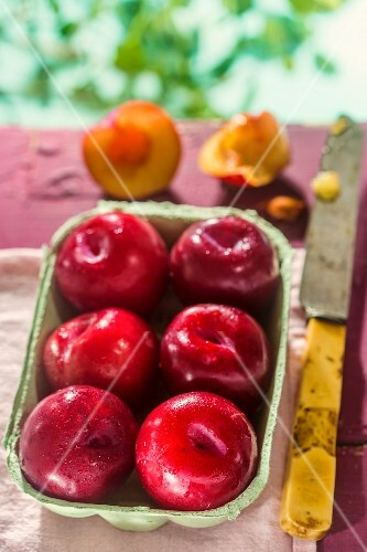 Red plums in a cardboard punnet