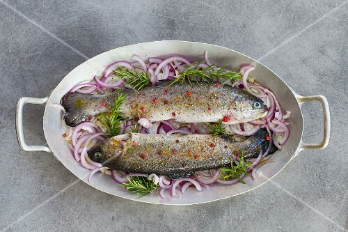Fresh trout on red onions and rosemary