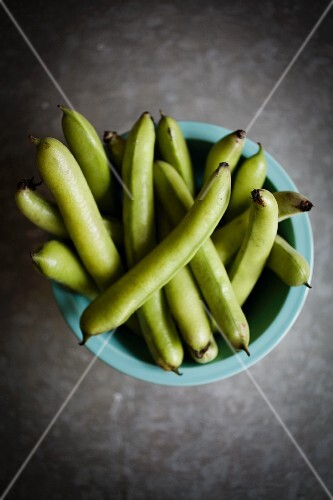 A bowl of fresh fava beans