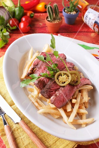 Grilled beef on a bed of chips (Mexico)