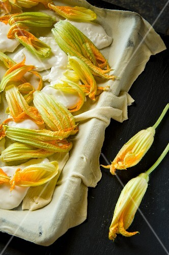 Courgette flowers with burrata on pastry