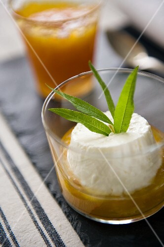 Cottage cheese with verbena in apricot jam