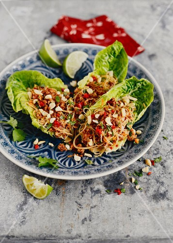 Glass noodle salad with minced meat and peanuts (Singapore)