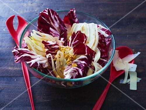 Walnut and fennel salad with radicchio