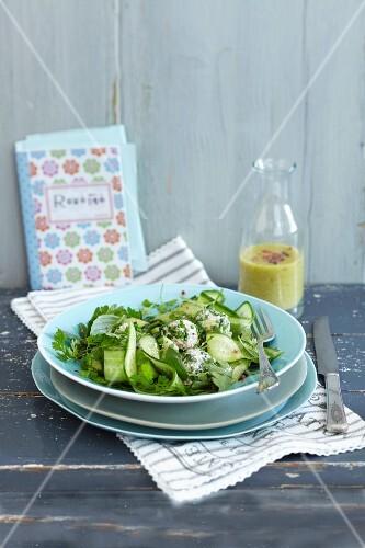 Buckwheat balls on a cucumber salad with fresh chervil