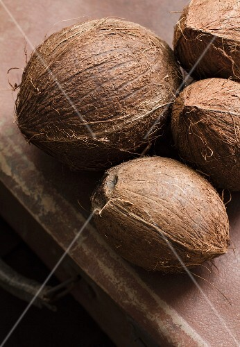Four coconuts