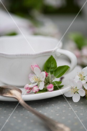 A cup of tea decorated with apple blossom