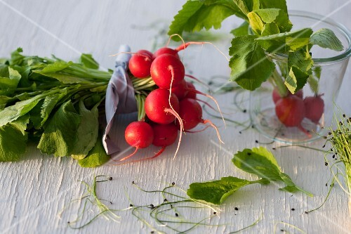 A bunch of radishes and cress