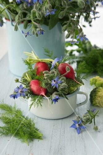Broccoli, radishes, borage and dill in a pot