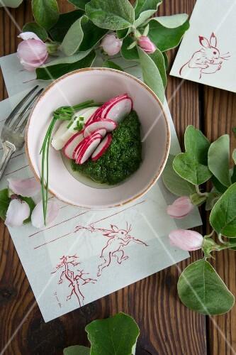 Radishes and mozzarella on purslane pesto