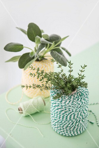 A roll of kitchen twine decorated with a bunch of fresh herbs