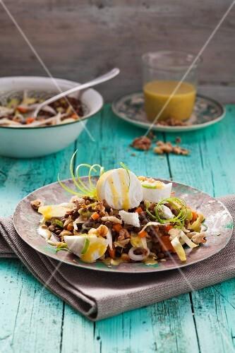 Linsen-Chicoreé-Salat mit Ziegenkäse