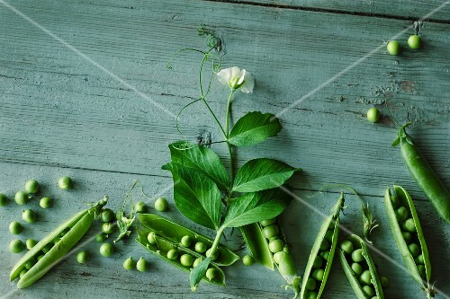 Peas with pods and a flower on a green wooden surface