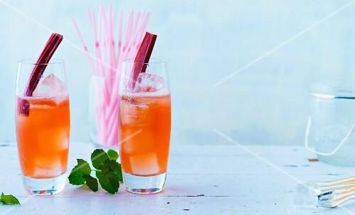 Rhubarb Mint Cooler