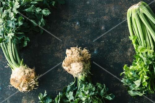 Celeriac and celery