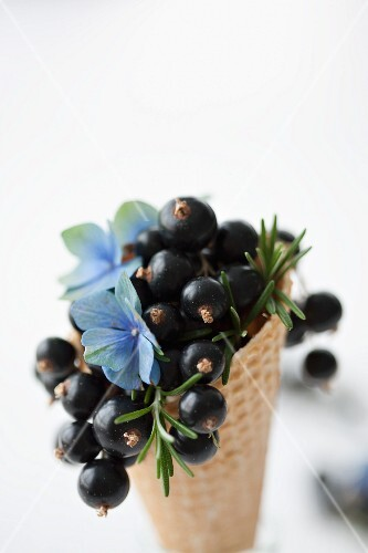 An ice cream cone filled with blackcurrants, hydrangeas and rosemary