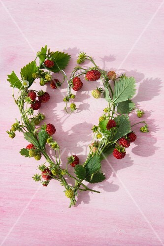 A heart-shaped wreath of wild strawberries and leaves tied and wrapped around a piece of wire