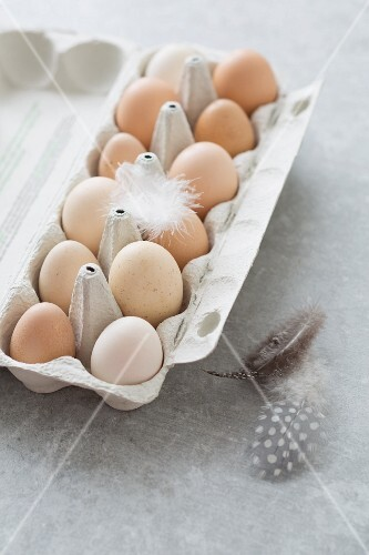 Chicken eggs and feathers in an egg box
