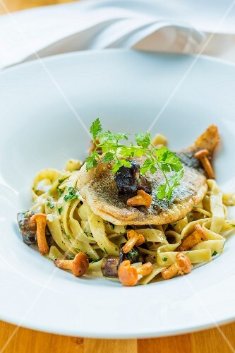 Turbot on a bed of tagliatelle with mushrooms