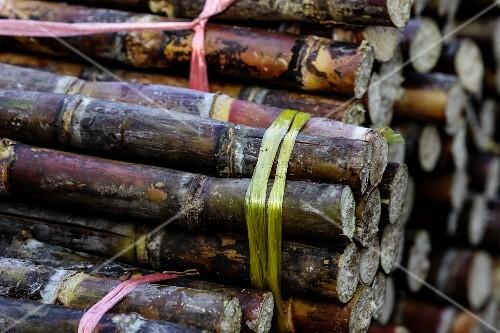 Bundles of cane sugar at the Kua Din Market in Vientiane, Laos