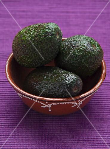 Three avocados in a ceramic bowl