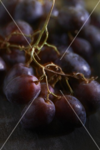 Italian red grapes (close-up)
