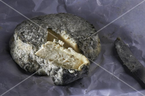 A sliced wheel of Selles sur Cher cheese (goat's cheese, France)