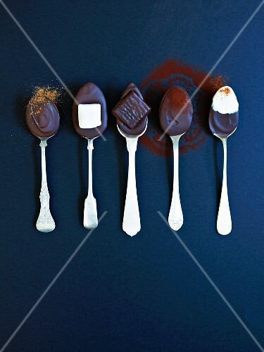 Five spoons with ingredients for hot chocolate