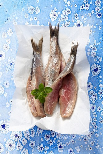 Fresh herring fillets on a piece of paper