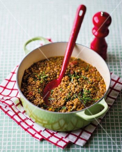 Vegetarian lentil ragout with brown lentils