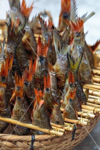 Grilled fresh water fish in a basket (Luang Prabang, Laos)