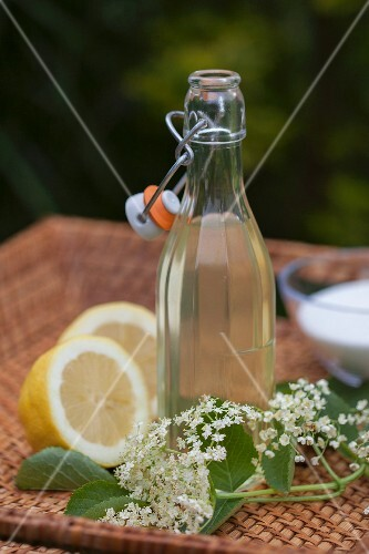 A bottle of elderflower syrup with elderflowers, lemon halves and sugar